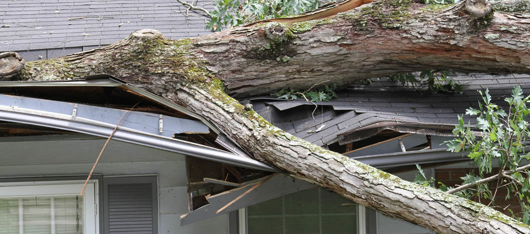 What Should You Do When Your Home's Roof is Damaged