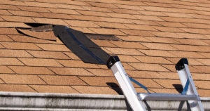 Tips to Determine if Your Roof is Damaged and Needing Roof Repair