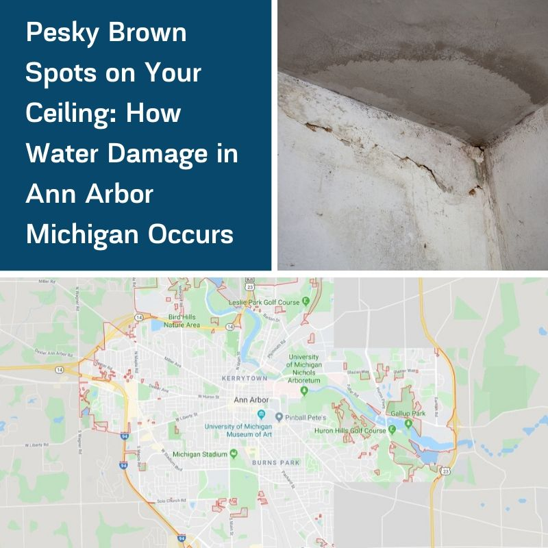 Pesky Brown Spots on Your Ceiling: How Water Damage in Ann Arbor Michigan Occurs