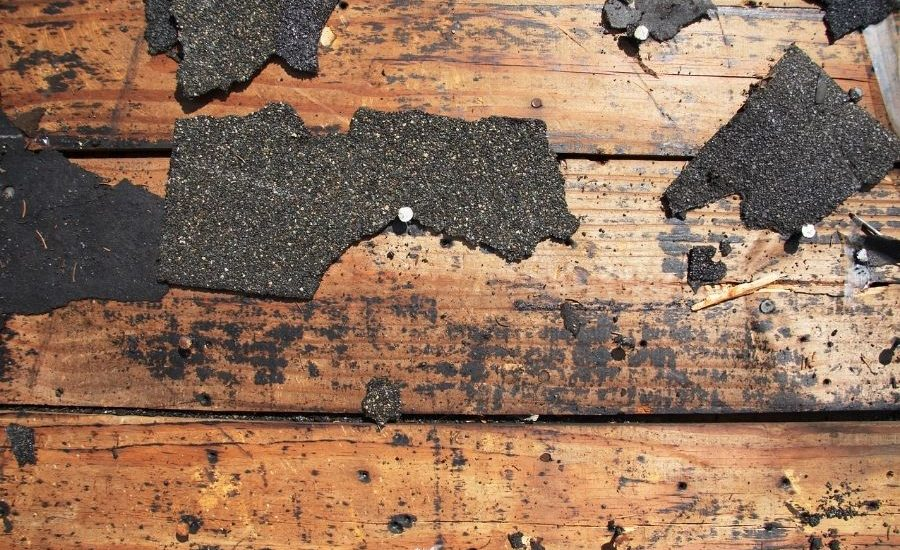 8 Reasons Why You May Have a Roof Leak in Canton Michigan