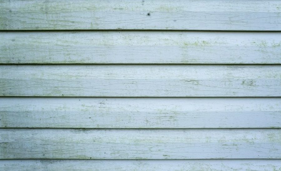 How To Keep Your Vinyl Siding in Southgate Michigan in Great Shape During Summer